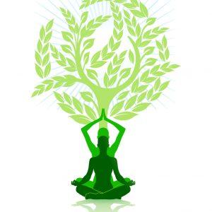 Initiation Supra - Chakra | Erklimmen Sie ganz leicht die göttlichen Chakra-Stufen mit Silvia Walz